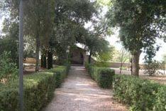 Bagnoregio11